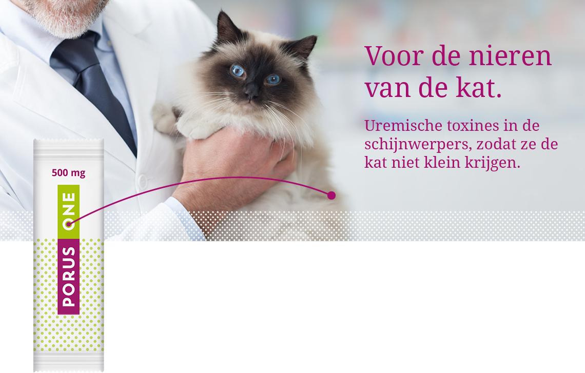 Porus One – Voor de nieren van de kat